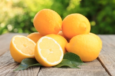 come-coltivare-i-limoni-in-vaso-2